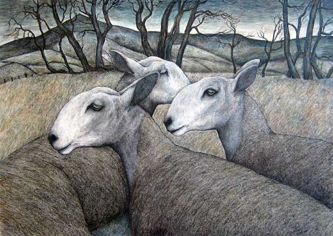 Seren Bell, Blue Remembered Sheep