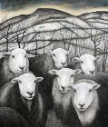 Seren Bell, Winter Fields With Herdwicks