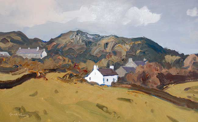 Gareth Thomas, Cottages, St Davids