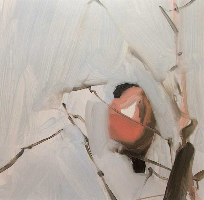Esther Tyson, February Bullfinch
