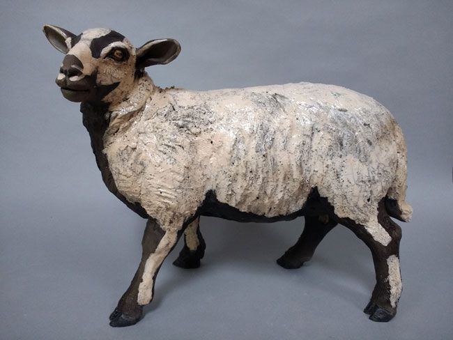 Sallie Wakley, Torddu (Badger-faced) Sheep