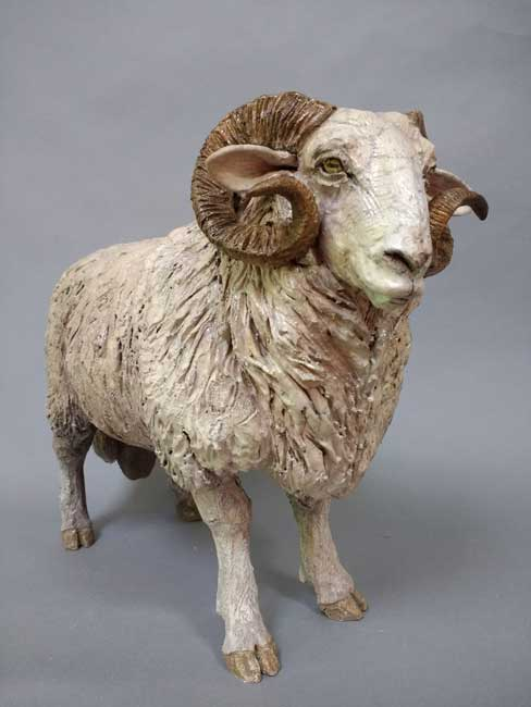 Sallie Wakley, Welsh Mountain Ram