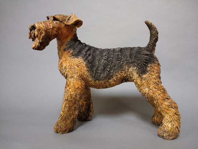 Sallie Wakley, Welsh Terrier
