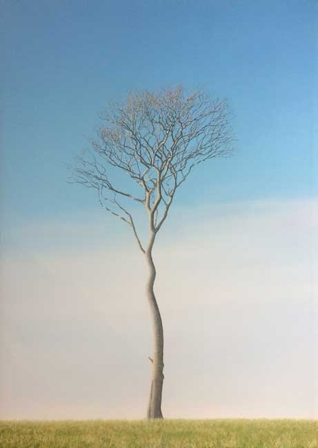 Nigel Wood, Lightning Tree